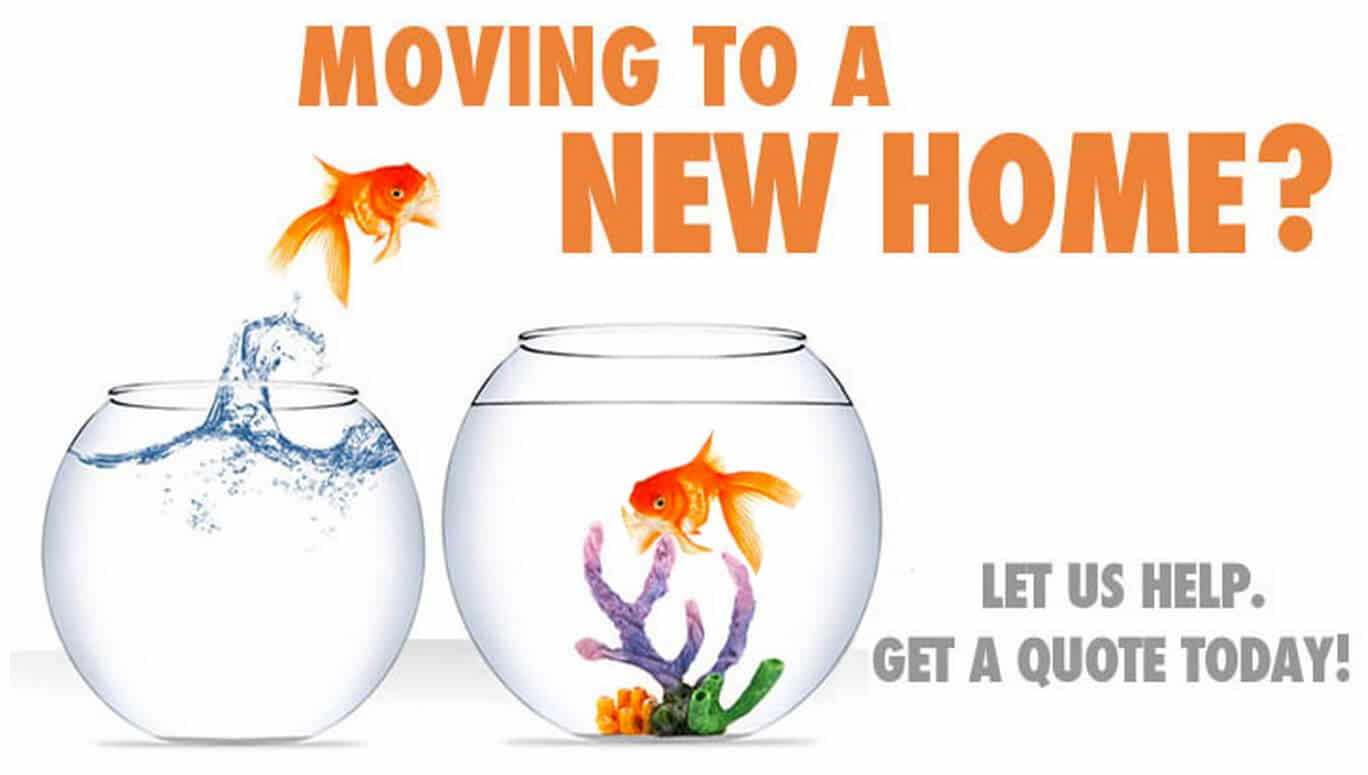 Moving to a New Home?